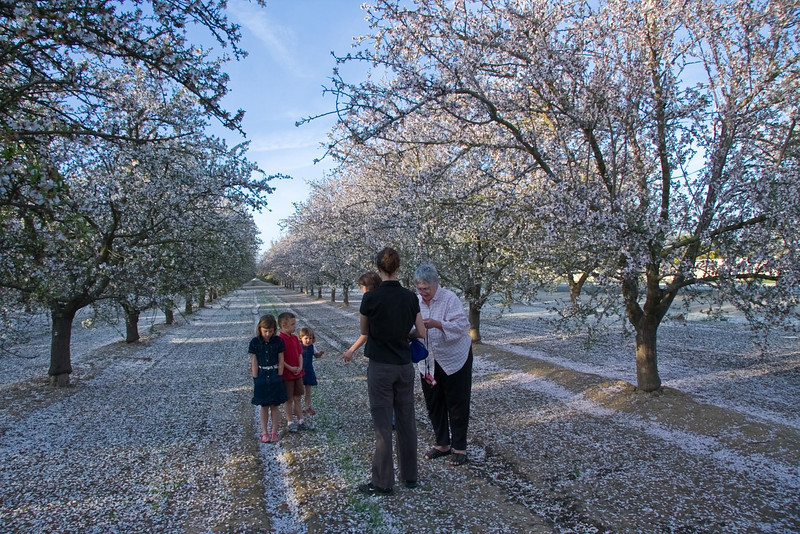 Getting ready for a photo shoot at an almond grove in NW Bakersfield.