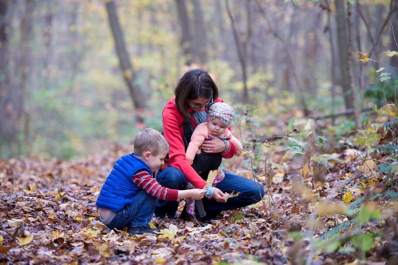 Meadow Run Loop Hike, Barber Meadow Run Hike