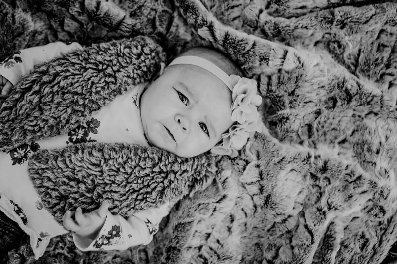 00018--©ADHPhotography2018--KaylaBauer--Family--October19