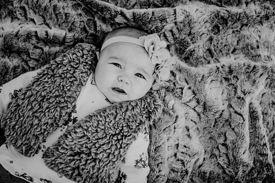 00006--©ADHPhotography2018--KaylaBauer--Family--October19