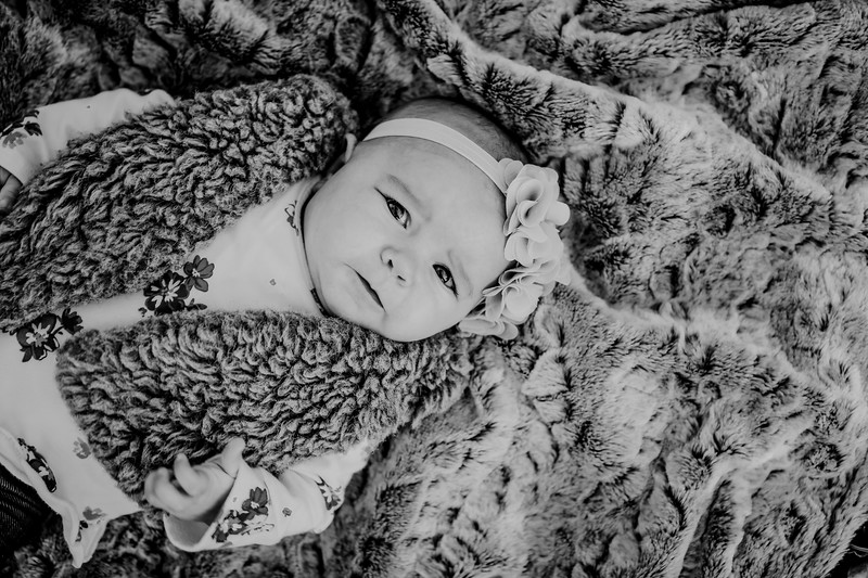 00016--©ADHPhotography2018--KaylaBauer--Family--October19