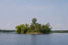 An island on Bay Lake