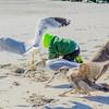 Jake at the beach 11-12-16-067