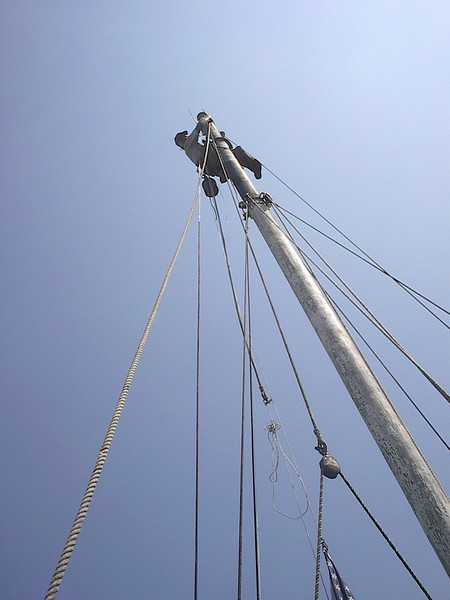 Dad practically stranded up the Mast!