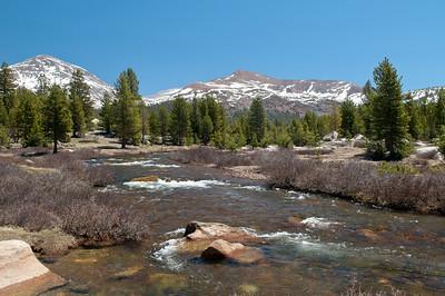 Tuolumne High Country near Tioga Pass