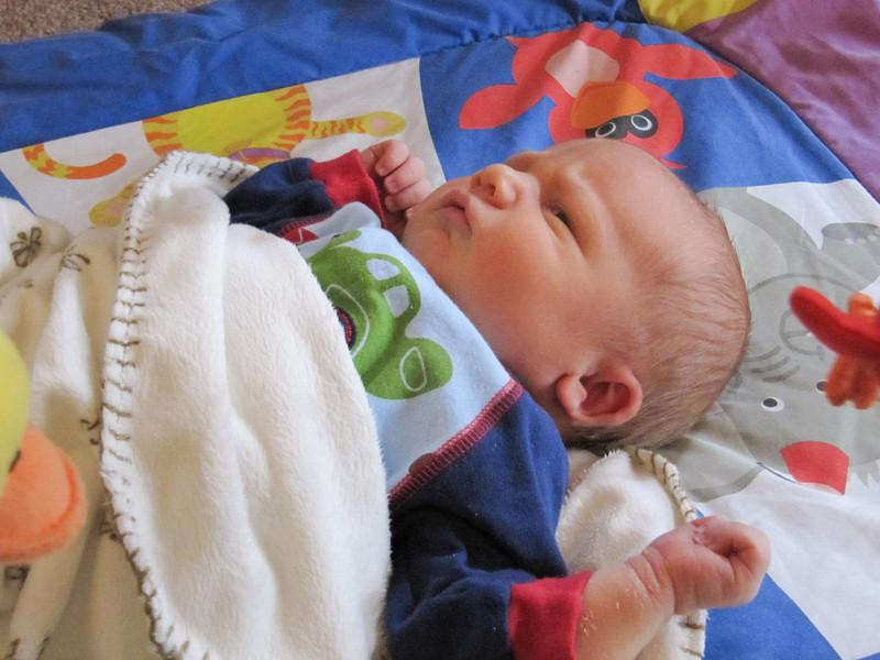 2009-Nov-8-week-BLY-45
