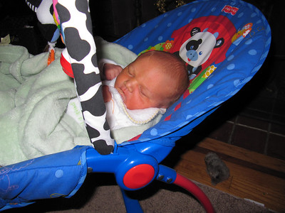 2009-Nov-8-week-BLY-20