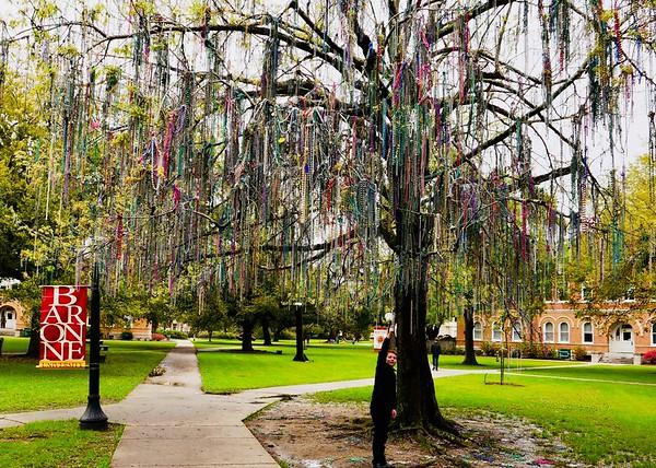 Tulane Campus.
