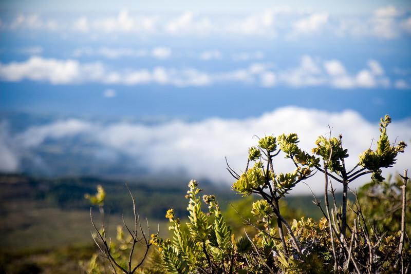 Taken at Ranch Wall facing West Maui