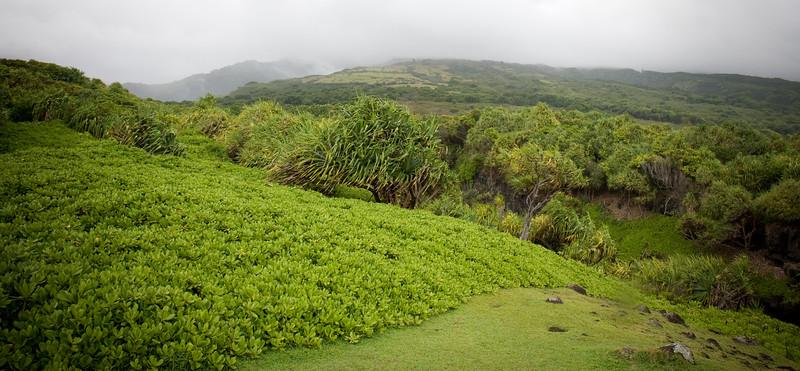 Maui2007Day7-025-6678