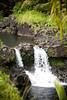 Maui2007Day7-022-6634