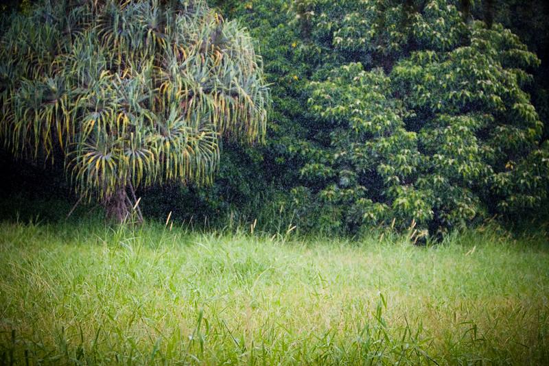 Maui2007Day7-019-6604