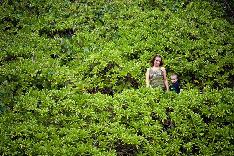 Maui2007Day7-013-6504