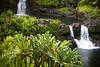 Maui2007Day7-020-6605