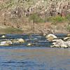 15. more rapids