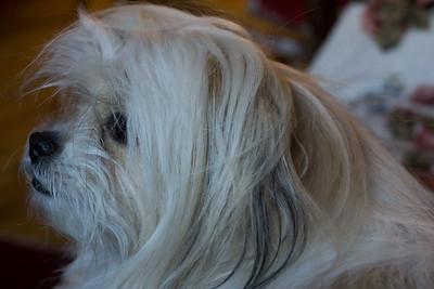 Biggie. In profile.