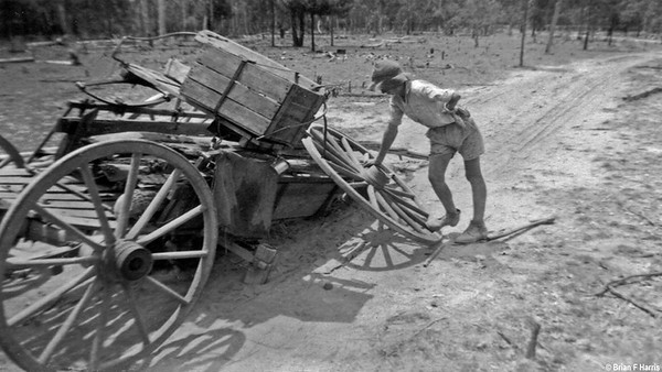 Broken axle. Overloaded with heavy green logs. Was never made for heavy loads. Fergy pulling it.