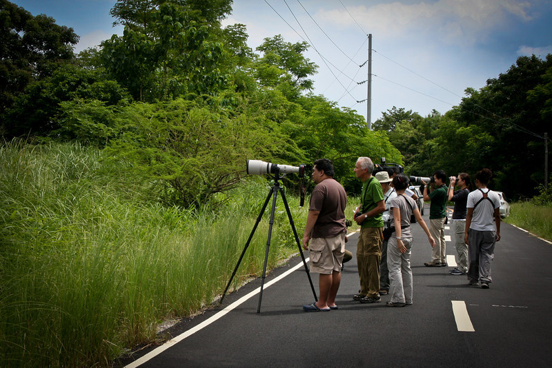"Birders... for DPWH.<br /> ""Roads are made for birding too."""