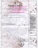 De Luca Mattia Birth Certificate 19890619