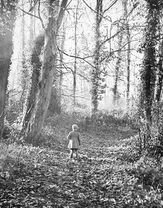 Ian wandering through the trees at Newent lake. I think Dad won an award for this picture with a Daily Newspaper. Could be the old Newent Canal bed.