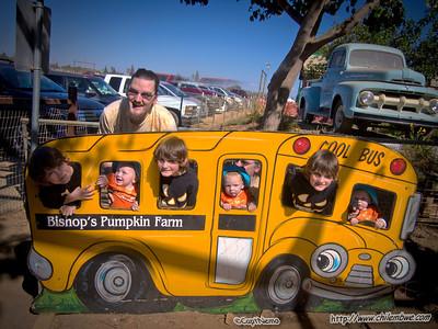 Bishops pumpkin farm