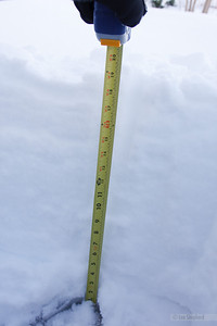 19 inches