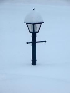 Lonely light pole