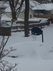 Snow on my neighbor's car almost reaches the basketball hoop!