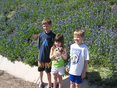 Blue Bonnets 2005