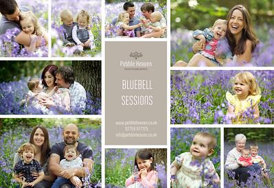 Bluebells Sessions JPEG