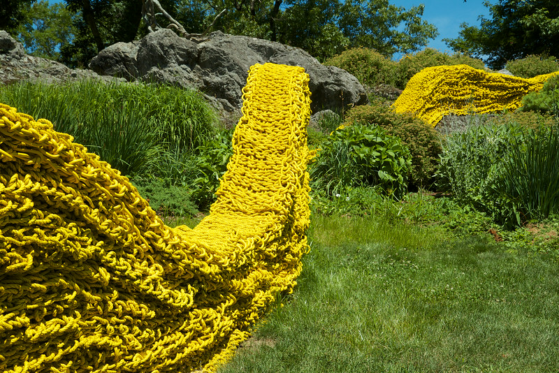 The yellow rope road