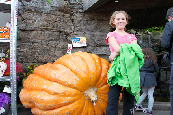 Samaia and the second biggest pumpkin - you should have seen the biggest!
