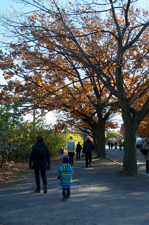 Grandma Karen and Jaden and the changing colours at the Montreal Botanical Gardens