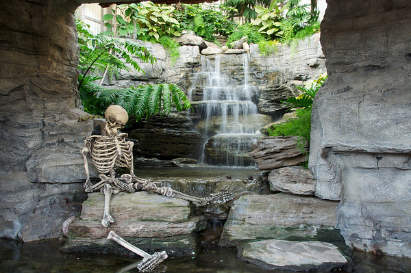 Creepy skeleton in the waterfalls