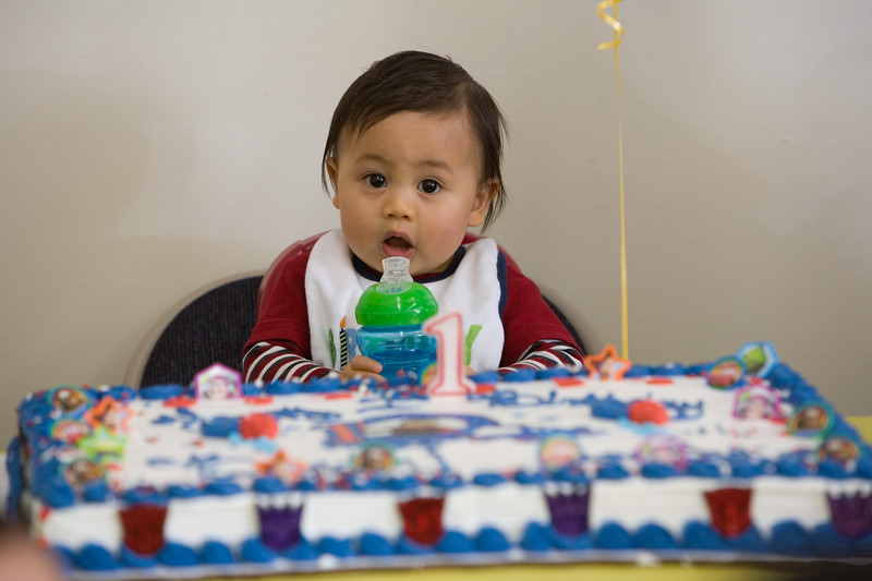 Brendon 1st Birthday 299.jpg