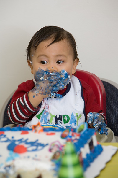 Brendon 1st Birthday 357.jpg