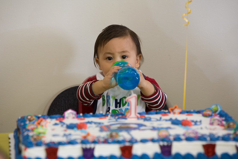 Brendon 1st Birthday 298.jpg