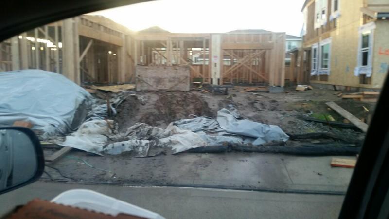 Jan 31 - Muddy driveway.