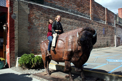 Can't go to downtown on Sherman with out getting your picture taken on the buffalo.