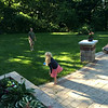 Lily and Pappy playing Frisbee