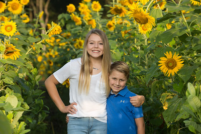browningsunflowers-57