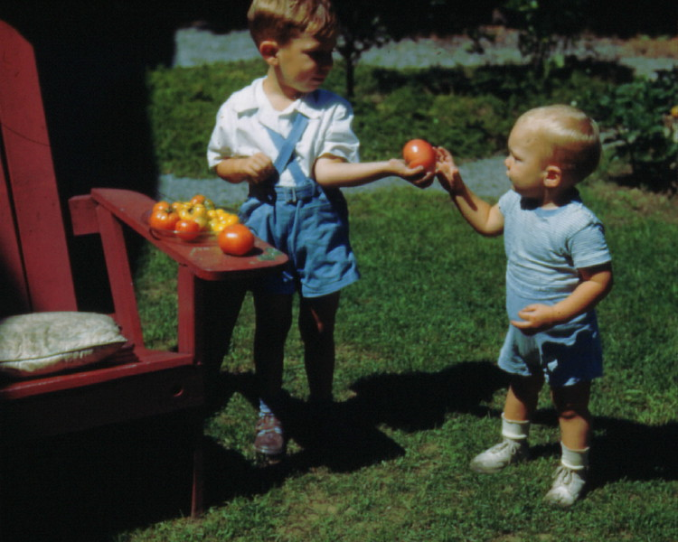 Bruce and Richard Dudley with tomatoes