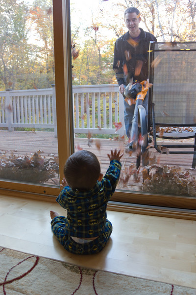 Luke blowing leaves at the window