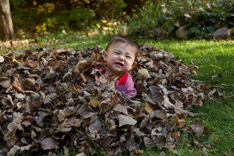 not a fan of touching the leaves...