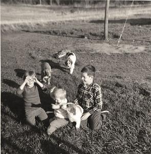 ThreeDogs
