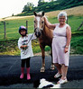 Edna Horse Wales