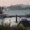 Alcatraz from the wharf