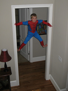 Spiderman-1-1