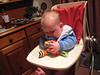 My first experience of a high chair. The tray let me test my eating skills on my soft toy.