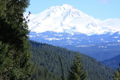 Mt. Shasta, CA.  We stayed in Shasta City one night on the way south.